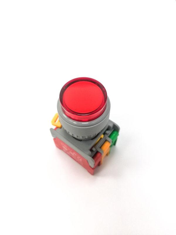 LXL22 Illuminated Push Button